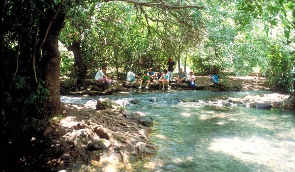 Tel Dan Nature Reserve Wading Pool
