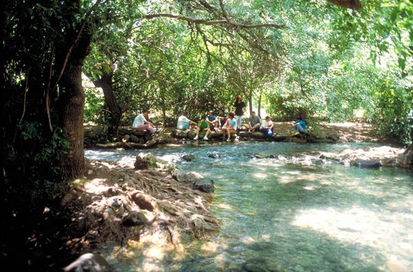 Tel Dan Nature Reserve Wading Pool_width600px