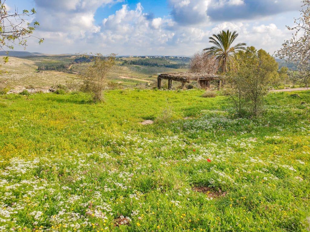 Neot Kedumim in Israel